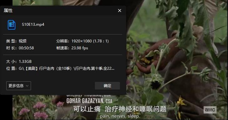 美剧《行尸走肉》第1-10季高清1080P百度云网盘下载[MP4/314.69GB]中英双字-米时光