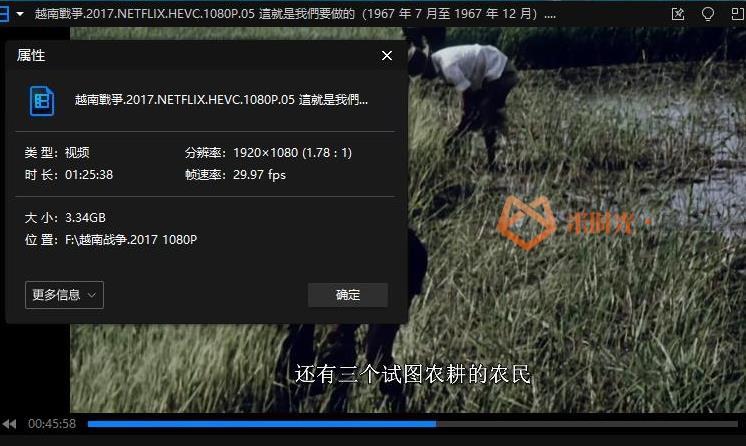 《The Vietnam War/越南战争》纪录片全10集高清1080P百度云网盘下载[MKV/40.41GB]英音中字-米时光