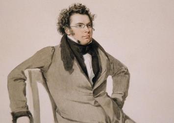 Franz Schubert《The Collector's Edition》[50张CD]歌曲合集百度云网盘下载[FLAC/11.47GB]-米时光
