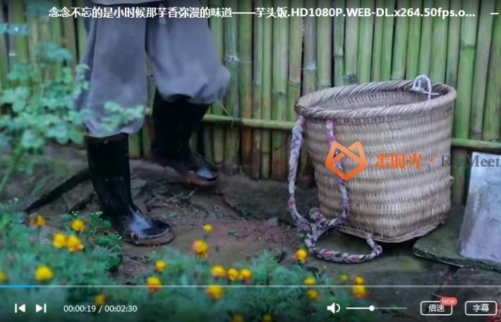 《李子柒视频大全102集》高清百度云网盘下载-米时光