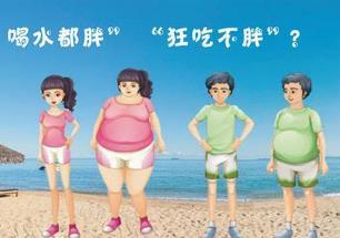 《如何养成易瘦体质,轻松减肥》视频MP4百度云网盘下载[778.79MB]-米时光