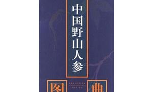 《中国野山人参图典》PDF电子版百度云网盘下载-米时光