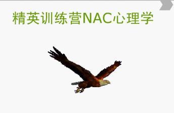 陈安之《超级NAC心理学现场密训》百度云网盘下载[RM/1.91GB]-米时光